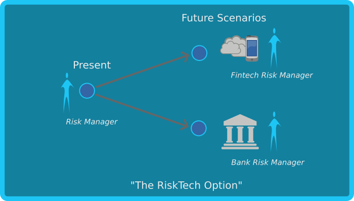 Risk Management Skills for the Fintech Era