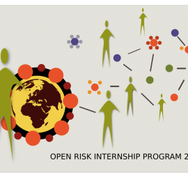 Risk Management Internship